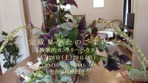 IMAG0476